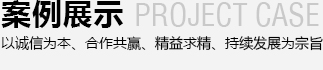 案例zhan示